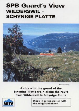 Schynige Platte Guards View